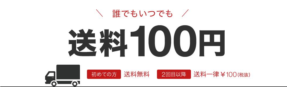 誰でもいつでも送料¥100初めての方送料無料2回目以降送料一律100¥(税抜)